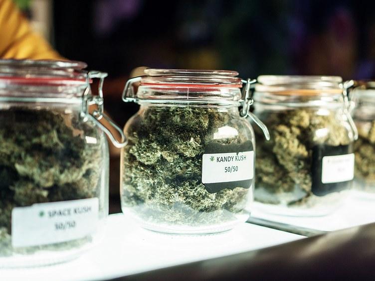 Two+marijuana+bills+are+on+the+Connecticut+legislature%27s+floor.+