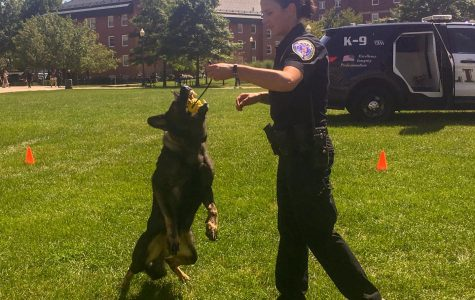 K-9 Demonstration Gets A 10