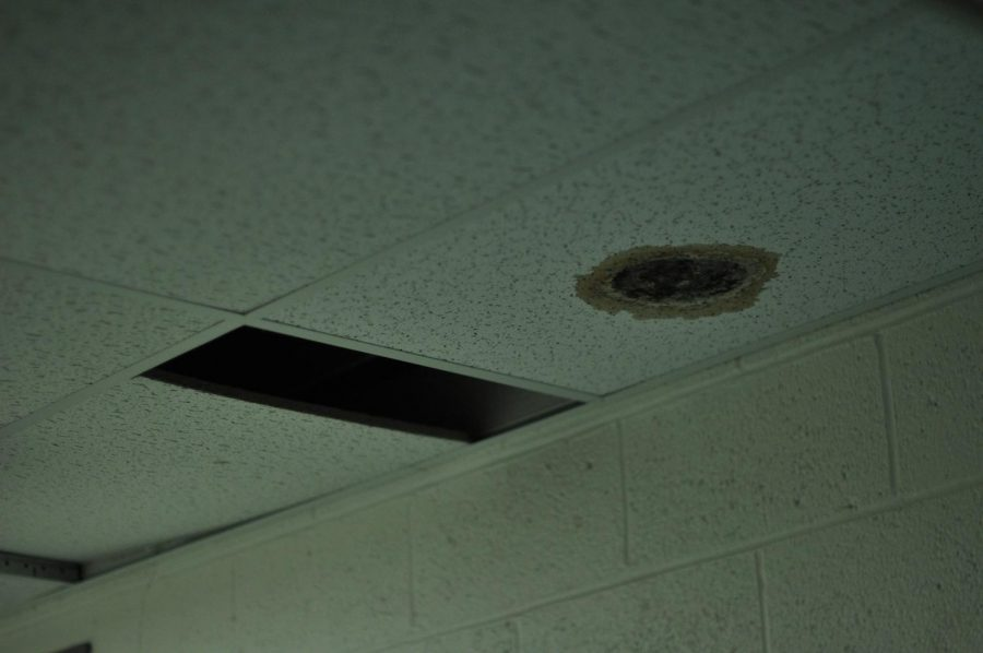 Missing+ceiling+tiles+and+unknown+substance+stains+are+in+addition+to+potential+health+hazards+in+Welte+Theatre%27s+basement.