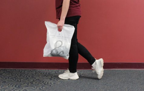 The Elements Of The Plastic Bag Ban