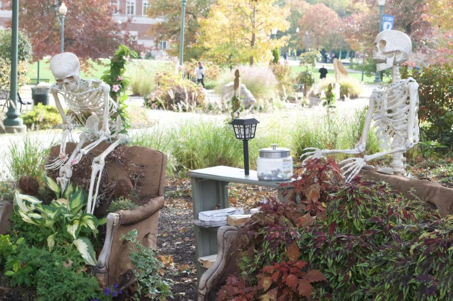 Two skeletons sit on Matthew Warshauer's pop-up art exhibit, guarding the free candy.